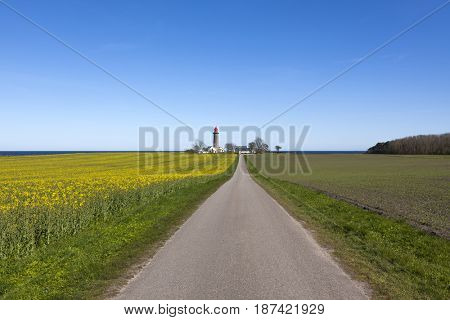 Landscape near Grenaa, Denmark, with rural road leading to lighthouse and rape field in foreground