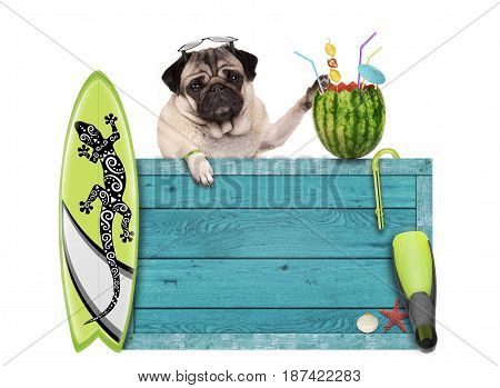 pug dog with blue vintage wooden beach sign surfboard and summer watermelon cocktail isolated on white background