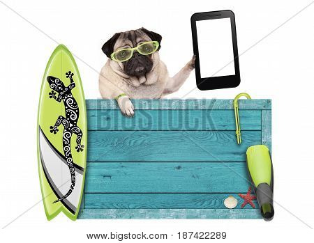 pug dog on vacation with blue vintage wooden beach sign surfboard and mobile phone / tablet isolated on white background