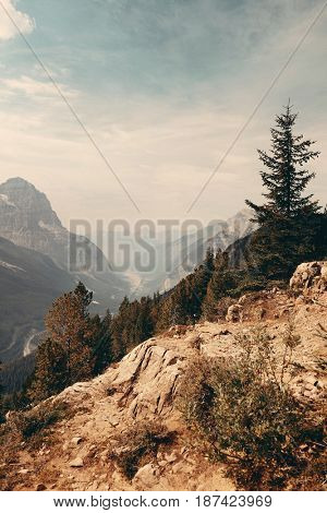 Mountain top view with forest and cloud in Banff National Park.