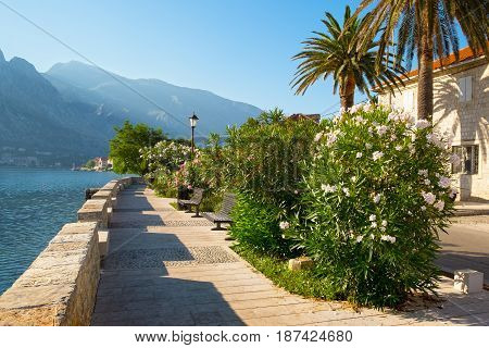 Seafront in town Prcanj Kotor Bay Montenegro