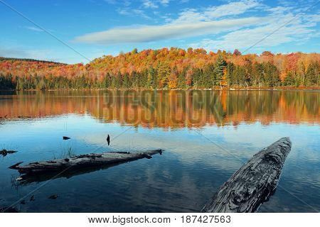 Lake with Autumn foliage, wood log at shore and mountains with reflection in New England Stowe