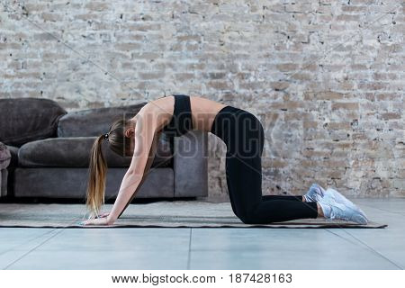 Fit young Caucasian woman practicing yoga at home standing in cat and cow pose arching her back.