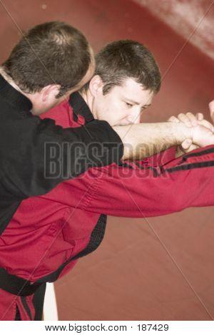 Martial Arts Move