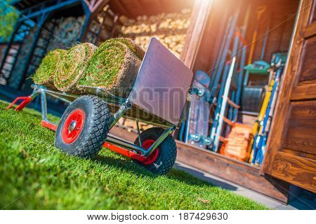Grass Turfs on a Cart Ready To Move For Installation. Rolled Garden Natural Grass