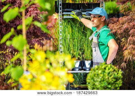 Greenhouse Gardening Concept. Professional Caucasian Gardener Taking Break Before Next Greenhouse Task.