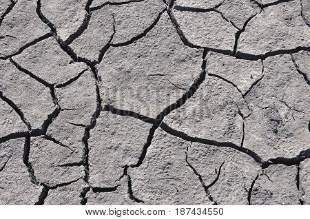 Gray cracked soil, top view, close up