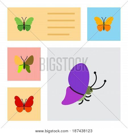 Flat Butterfly Set Of Beauty Fly, Milkweed, Summer Insect And Other Vector Objects. Also Includes Monarch, Moth, Butterfly Elements.