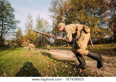 Dyatlovichi, Belarus - October 2, 2016: Reenactor Dressed As Russian Soviet Red Army Soldier Of World War II Hidden Running To Enemy Positions In Autumn Forest At Historical Reenactment