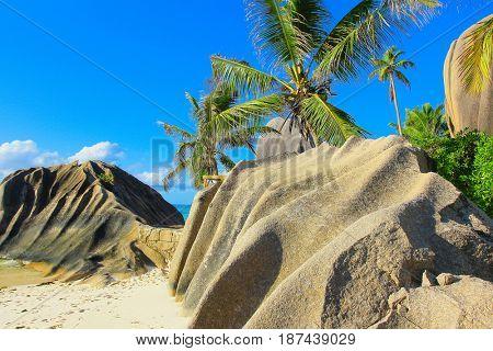 Exotic Landscape Nature