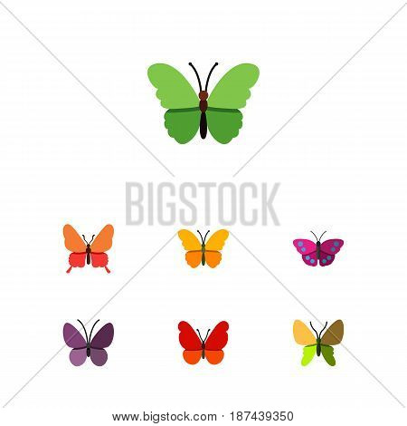 Flat Moth Set Of Archippus, Violet Wing, Monarch And Other Vector Objects. Also Includes Archippus, Milkweed, Butterfly Elements.