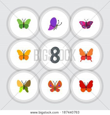 Flat Butterfly Set Of Beauty Fly, Summer Insect, Monarch And Other Vector Objects. Also Includes Moth, Milkweed, Monarch Elements.