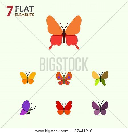 Flat Butterfly Set Of Beauty Fly, Summer Insect, Danaus Plexippus And Other Vector Objects. Also Includes Butterfly, Monarch, Milkweed Elements.