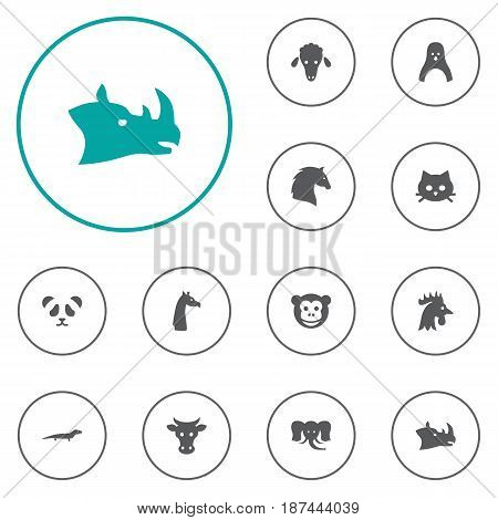 Set Of 12 Alive Icons Set.Collection Of Camelopard, Gecko, Steed And Other Elements.