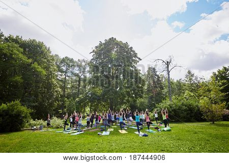 MOSCOW, RUSSIA - JUL 09, 2016: Men and women make exercises during yoga training on grass at summer day in park, rear view. Yoga is a group of practices which originated in ancient India.