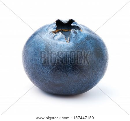 Blueberry on white background isolated, close up