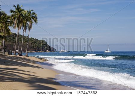 Pacific Ocean beach with palm trees in Quimixto Mexico