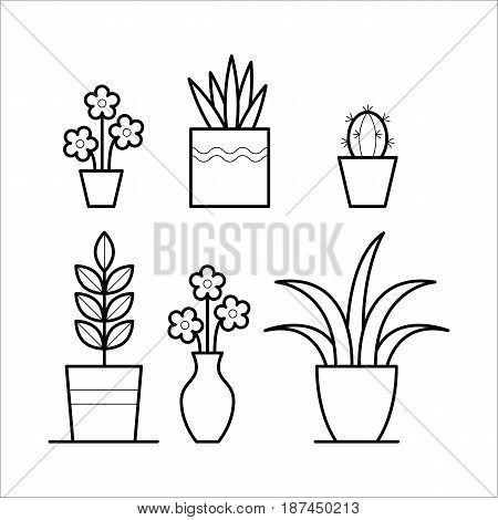 Set of house plants with flower, cactus, leaves in the pots for home decor on a windowsill. Decorative element in thin linear style. Flat illustration isolated on white background.