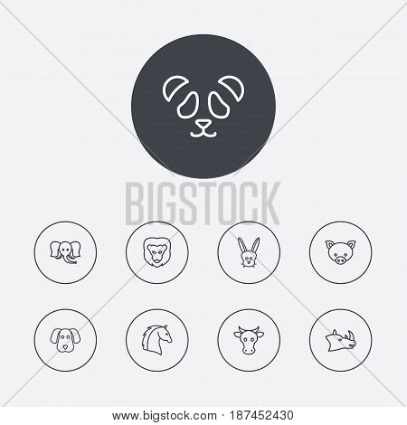 Set Of 9 Beast Outline Icons Set.Collection Of Lion, Rhino, Cow And Other Elements.