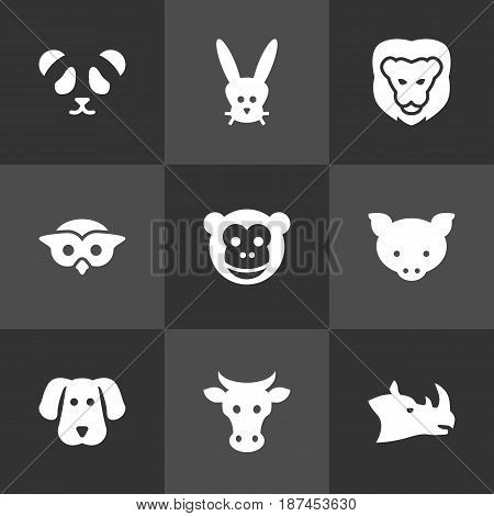 Set Of 9 Alive Icons Set.Collection Of Bunny, Hound, Bear And Other Elements.
