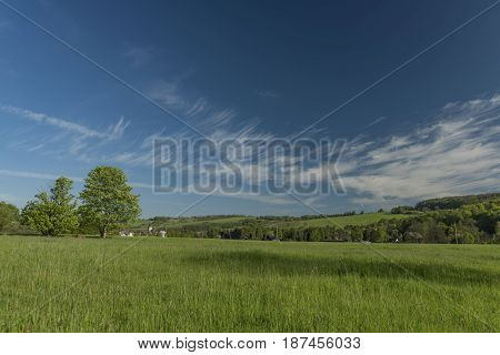 Spring morning in Varnsdorf region with blue sky and green meadow