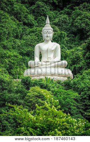 White Buddha Image on hill surrouned by trees