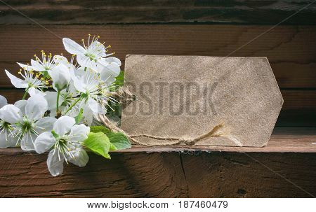 Spring holiday background blooming plum and paper tag on wooden table closeup