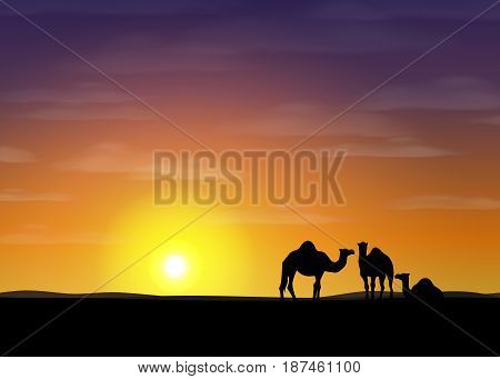 Background of desert. Beautiful sunset with silhouettes of camels. Horizontal banner. Vector illustration.