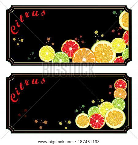 Abstract vector illustration logo for ripe citrus fruit orange lemon lime grapefruit pomelo cut sliced.Citrus peel fruits lemons ripe limes sweet grapefruits fresh pomelos.Eat vitamin C citruses.