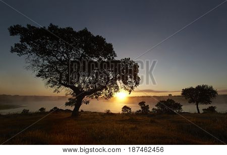 Landscape in extremadura spain with sunrise in the background