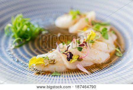 Closeup of raw scallops fine dining. Fresh raw scallops sashimi dish. Sashimi is a Japanese cuisine delicacy consisting of sliced raw meat (usually fish and seafood) often served in sushi restaurants.