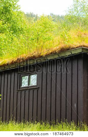 Norwegian typical country house with grass on the roof