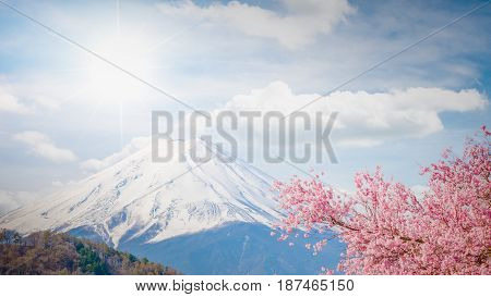 Mountain Fuji In Spring , Cherry Blossom Sakura And Fuji At Kawaguchiko Japan