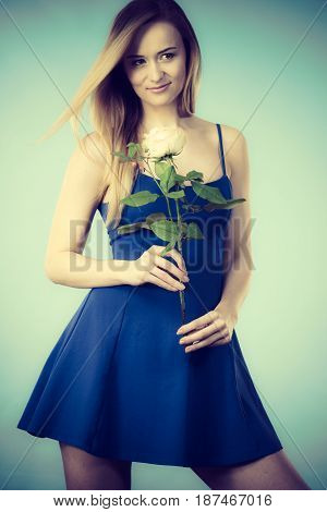 Attractive blonde young woman holding white rose flower. Valentines and womens day gift concept.