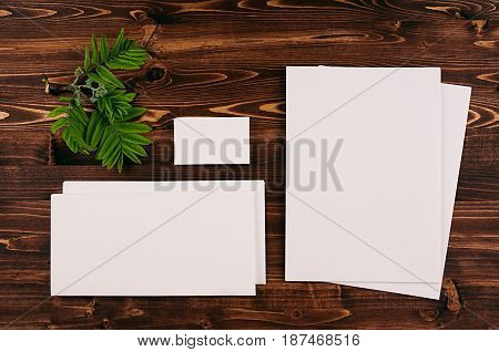 Corporate identity template stationery with green foliage on vintage brown wooden board. Mock up for branding graphic designers presentations and portfolios.