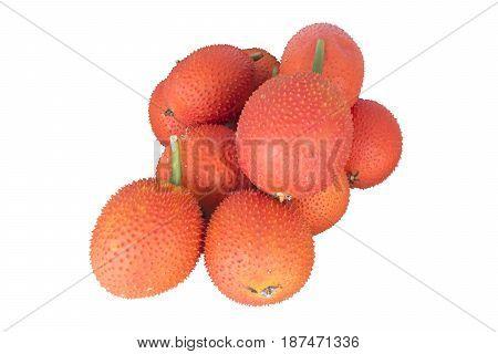 Baby jackfruit. Cochinchin gourd. Spiny bitter. Sweet gourd.