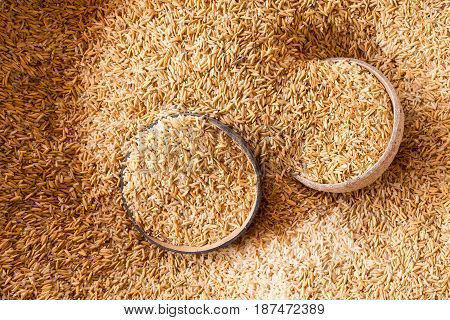 Mix paddy rice include bran and broken-milled rice before separate.