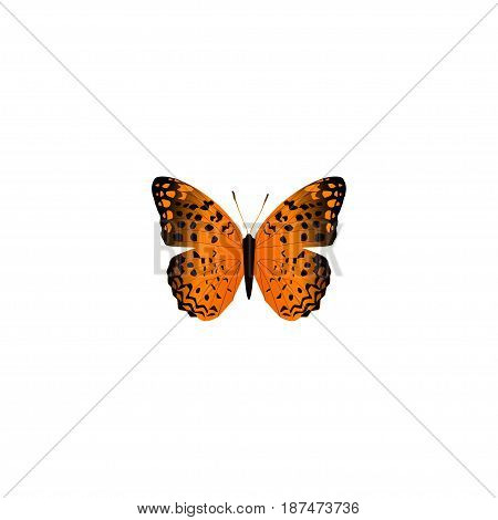 Realistic Monarch Element. Vector Illustration Of Realistic Danaus Plexippus Isolated On Clean Background. Can Be Used As Monarch, Orange And Butterfly Symbols.
