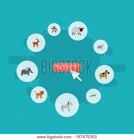 Flat Kine, Jackass, Chimpanzee And Other Vector Elements. Set Of Mammal Flat Symbols Also Includes Puma, Donkey, Mutton Objects.