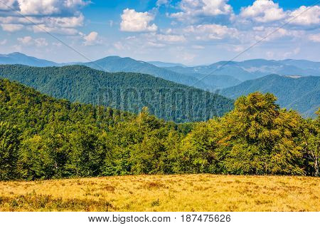 Autumn Meadow On Hillside Of Mountain Range