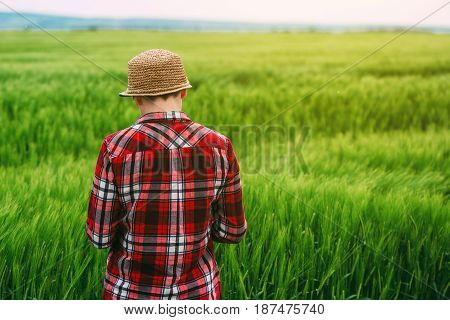 Female farmer in wheat field from behind adult caucasian woman looking at cereal crop cultivated plantation