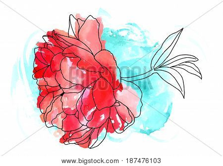 Vector and watercolor drawing of a red peony flower in bloom, on a branch with leaves, on a teal brushstroke texture, a decorative element for a greeting card or wedding invitation