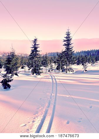 Two Ways For Cross Country Skiing In Winter Mountains.