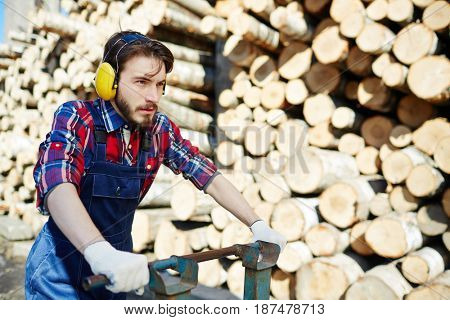 Portrait of man wearing earmuffs working on timber cutting site, transporting wood logs