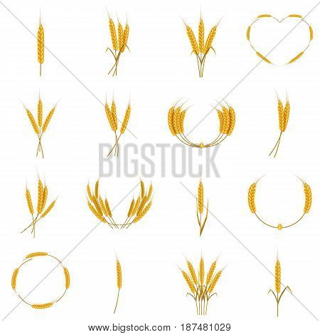 Ear corn food icons set. Cartoon illustration of 16 ear corn food vector icons for web