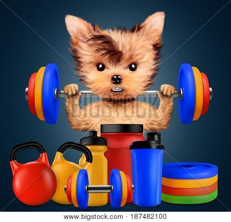 Funny dog with sport equipment and holding barbell. Concept of sport and fitness. Realistic 3D illustration.