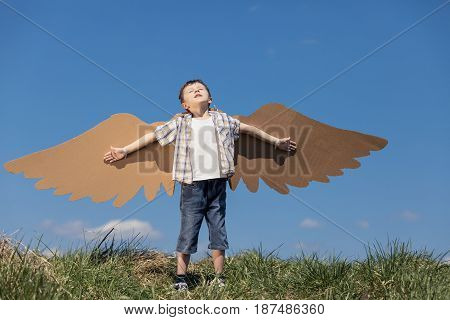 Little boy playing with cardboard toy wings in the park at the day time. Concept of happy game. Child having fun outdoors. Picture made on the background of blue sky.