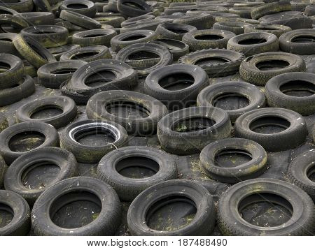 A field full of tires ready to be recycled.