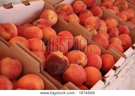Fresh Picked Peaches For Sale