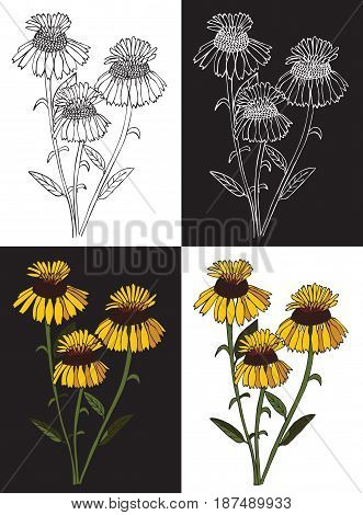 Drawing on black and white background bouquet of three yellow flowers